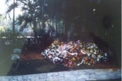 Prima sepoltura nel convento dei Padri S.C.J. di Taubate