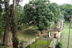 Zélia-Pedreira-Magalhães-7