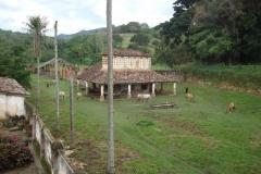 Zélia-Pedreira-Magalhães-8